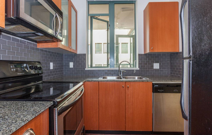 700ft2-Spacious-Renovated-Downtown-1-Bedroom-at-3.01.05-PM